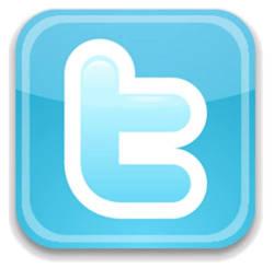 Twitter logo - Viddyad Blog