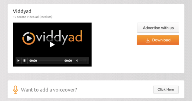 Viddyad campaign and voiceover options
